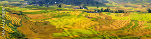 Autocollant pour porte Les champs de riz Terraced rice fields in Vietnam