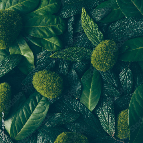 Poster Natuur Creative layout made of green leaves. Flat lay. Nature concept