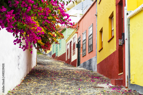 Colorfu street with flowers