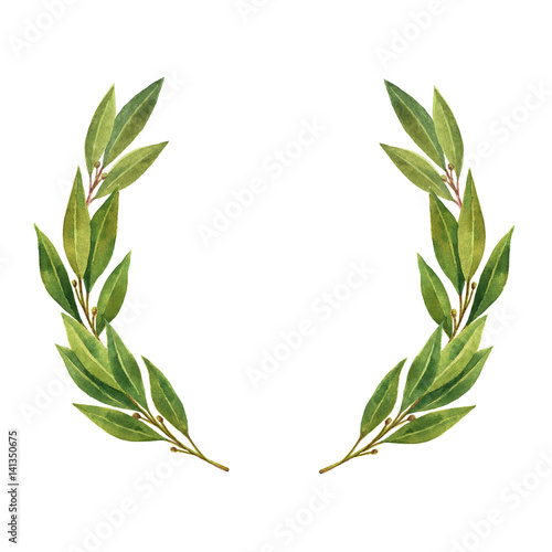 Photo  Watercolor Bay leaf wreath isolated on white background.