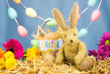 Bunny Rabbit With Tin Easter B...