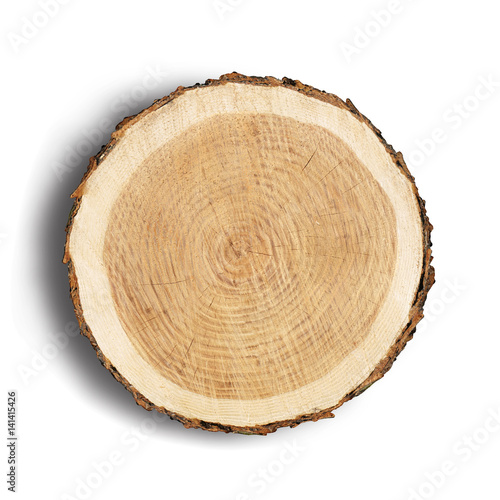 Photo Stands Wood Large circular piece of wood cross section with tree ring texture pattern and cracks isolated on white background. Rough organic edges of bark.
