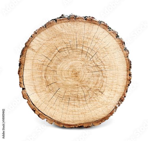 Fotografia Wooden stump isolated on the white background