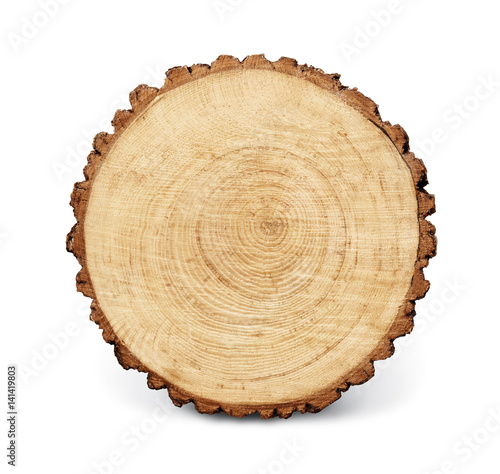 Photo Stands Wood Wooden stump isolated on the white background. Round cut down tree with annual rings as a wood texture.