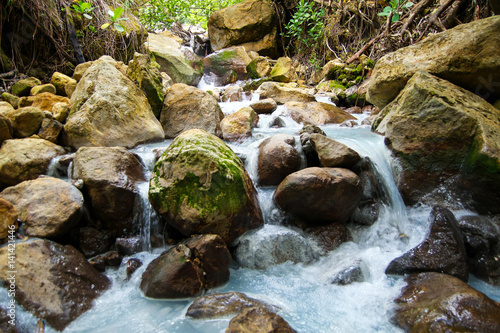 Fotografering  Rocky river stream in Dominica on Boiling Lake Hike