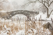 Blizzard in Central Park. Gapstow bridge in Manhattan