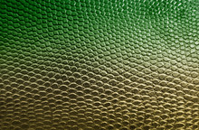 Green Snake Skin Texture Backg...