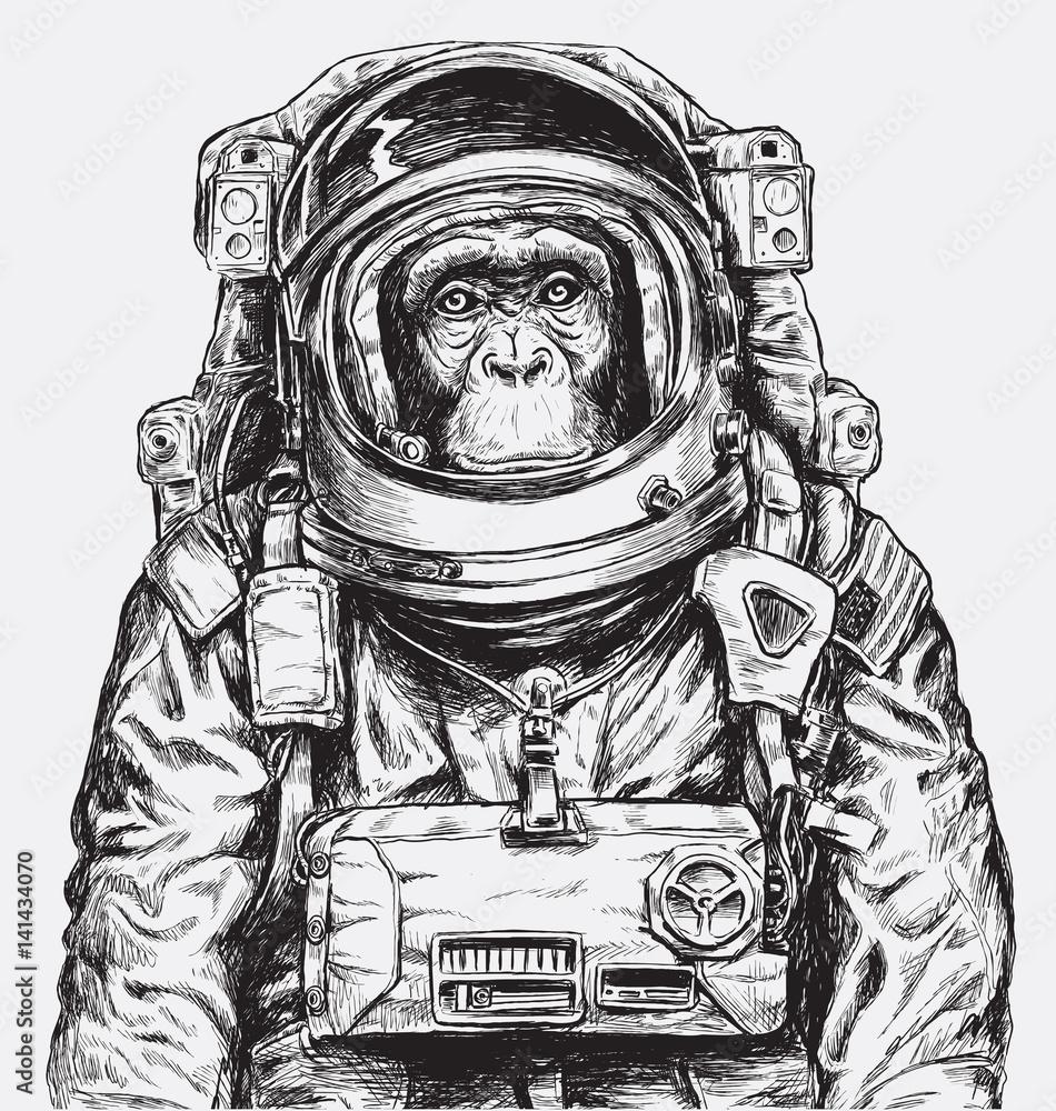 Fototapeta Hand Drawn Monkey Astronaut Vector
