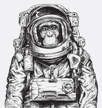 Hand Drawn Monkey Astronaut Ve...