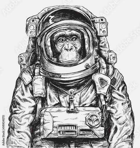 Photo  Hand Drawn Monkey Astronaut Vector