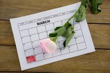 Pink Rose On Calendar