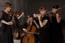 Musician Play Violin On Dark