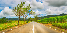 Quite Road Among Green Hills L...