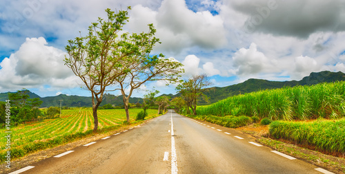 Foto  Quite road among green hills landscape, Mauritius. Panorama