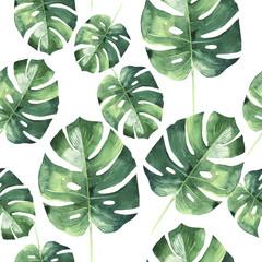 fototapeta Hawajskie tropikalne liście