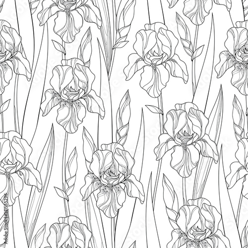 Vector Seamless Pattern With Outline Iris Flowers Bud And Leaves In Black On The White Background Floral