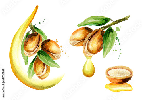 Photo Set of argan oil compositions, can be used as a design element for the decoration of cosmetic or food products using argan oil