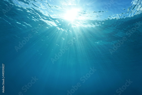 plakat Pacific ocean underwater sunlight through water surface, natural scene, French Polynesia