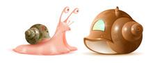 Cartoon Snail Looks At New She...