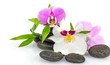 Wellness: Orchids, stones and bamboo :)