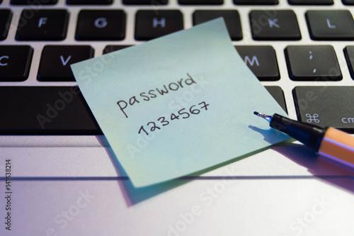 Cuadros en Lienzo Easy concept password