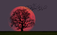 """Lone Tree With Supermoon """"Elements Of This Image Furnished By NASA"""""""