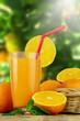 Fresh orange juice with oranges and blur garden nature background.