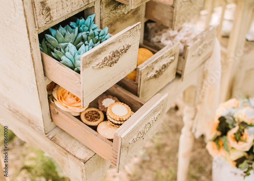 Wedding Decor Outdoor Green Plants Succulents And Sweet Cookies