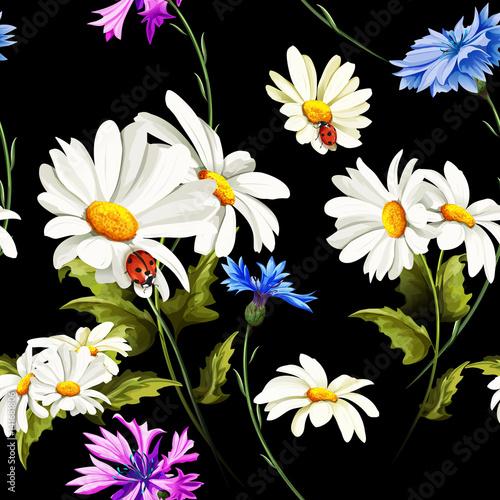 polne-kwiaty-na-czarnym-tle