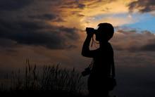 Birdwatching In The Evening