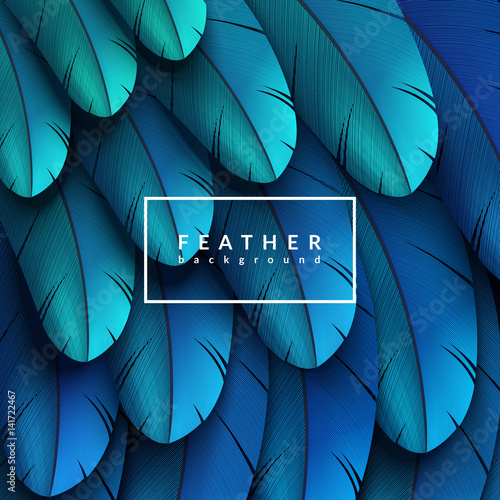 Colorful feathers background. Abstract feather composition. Eps10 vector illustration. Wall mural