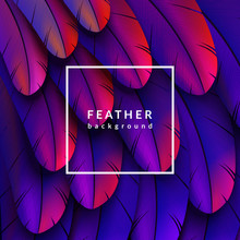Colorful Feathers Background. ...