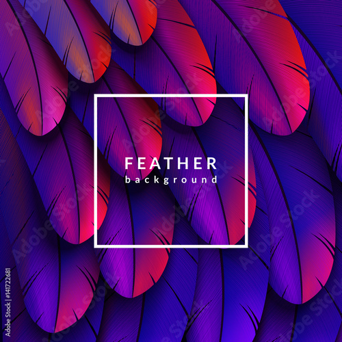 Photo  Colorful feathers background