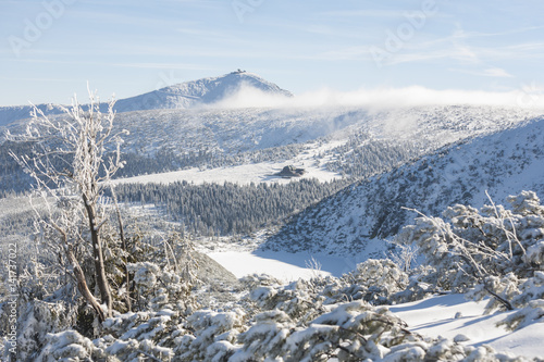 Fototapeta Winter in Karkonosze - Fog, frost nad snow Sniezka obraz