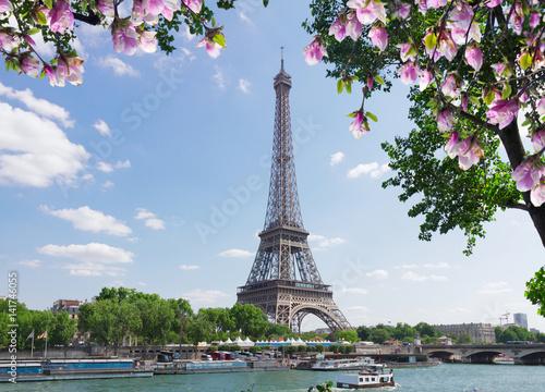 Photo Stands Paris eiffel tour over Seine river with tree and spring magnolia flowers, Paris, France