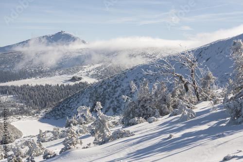 Obrazy na płótnie Canvas Winter in Karkonosze - Fog, frost nad snow Sniezka