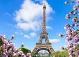 Fototapeta Fototapety z wieżą Eiffla - Eiffel Tower in sunny spring day in Paris, France