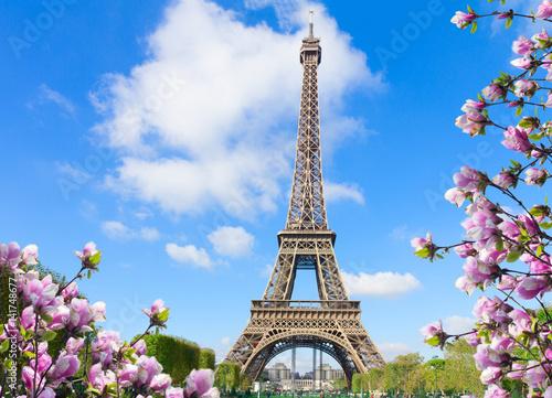 Poster de jardin Tour Eiffel Eiffel Tower in sunny spring day in Paris, France