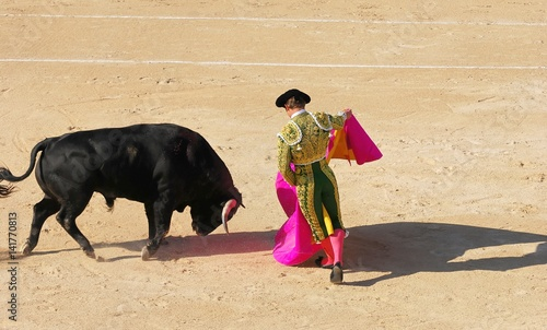 Photo sur Aluminium Corrida corrida 1