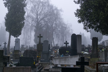 Cemetery During Misty Morning....