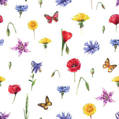 Fototapeta Meadow flowers, butterflies, herbs. Seamless summer background. Watercolor