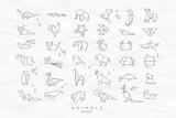 Fototapeta Fototapety na ścianę do pokoju dziecięcego - Animals flat origami set crumpled