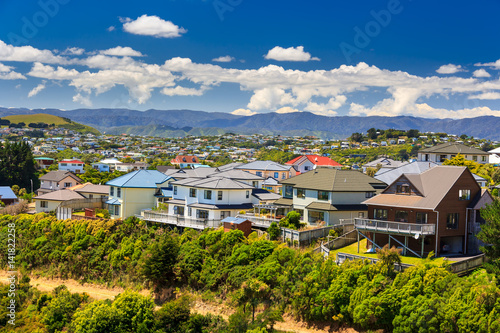beautiful neigborhood with houses. Location: New Zealand, capital city Wellington