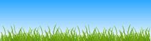 Grass Under The Sky - Vector