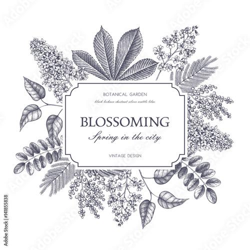 Αφίσα  Vector card design with hand drawn blossoming trees