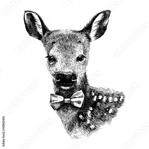 Baby deer hipster