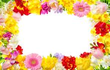 Rahmen Aus Bunten Blumen Mit Weißem Textfreiraum, Ideal Für Frühling Oder Jeden Blumigen Anlass