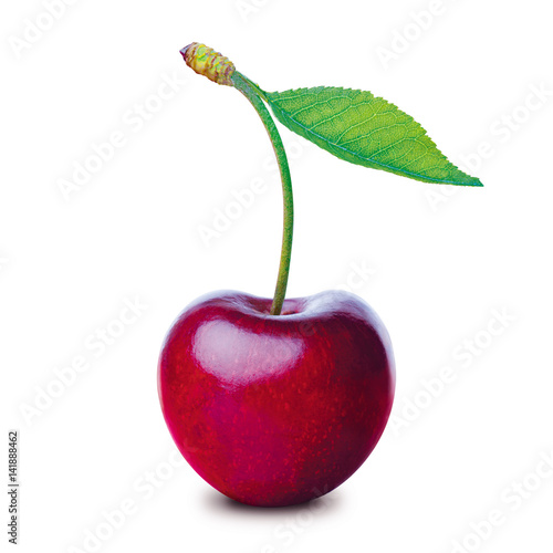 One cherry isolated on white background Wall mural