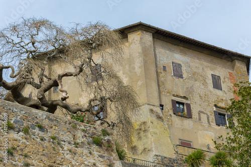 Fotografie, Obraz  Rocca di Capodimonte Viterbo