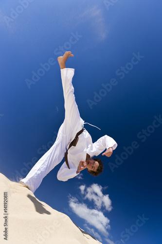 Martial arts high kick